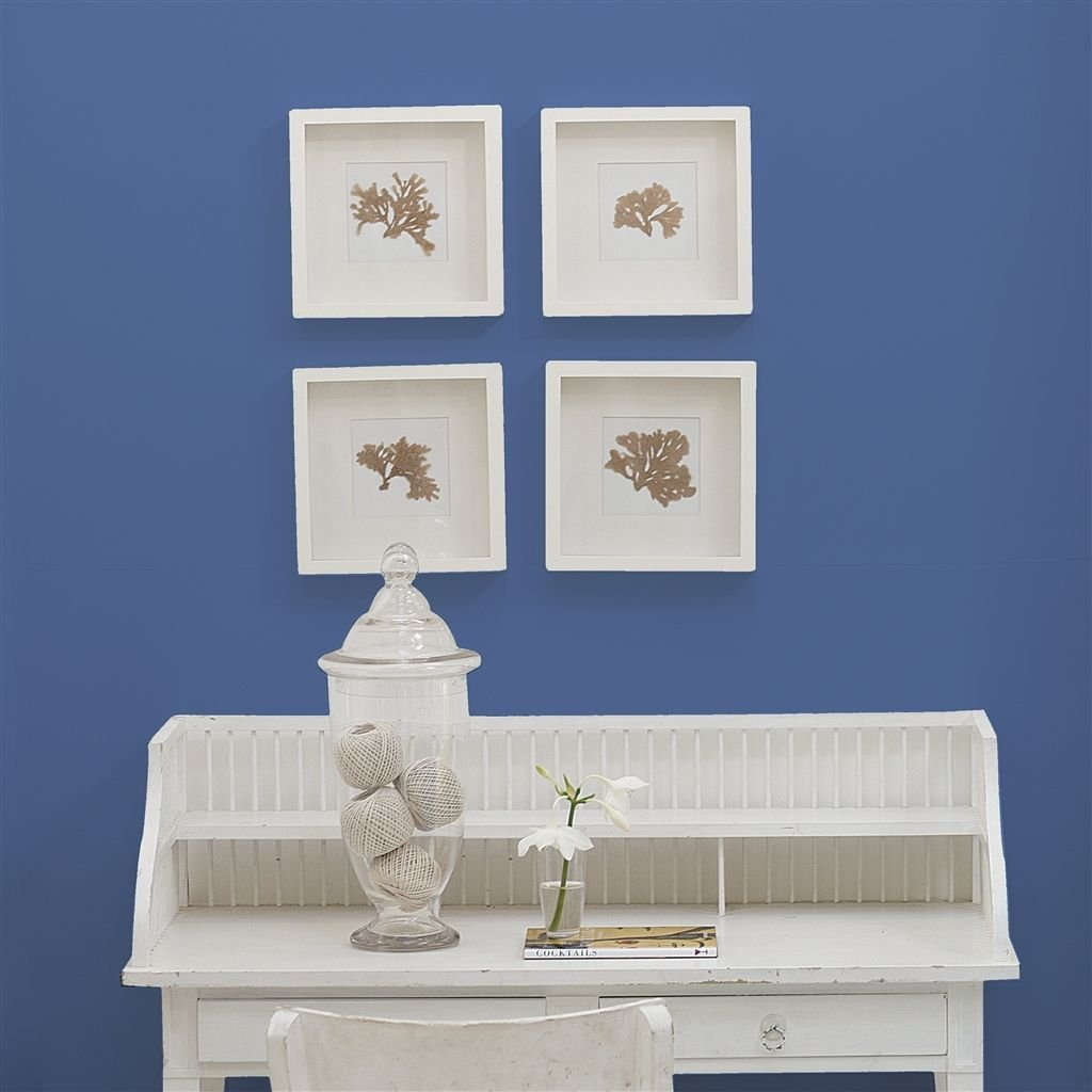 Bluebell No. 55 Paint   Designers Guild