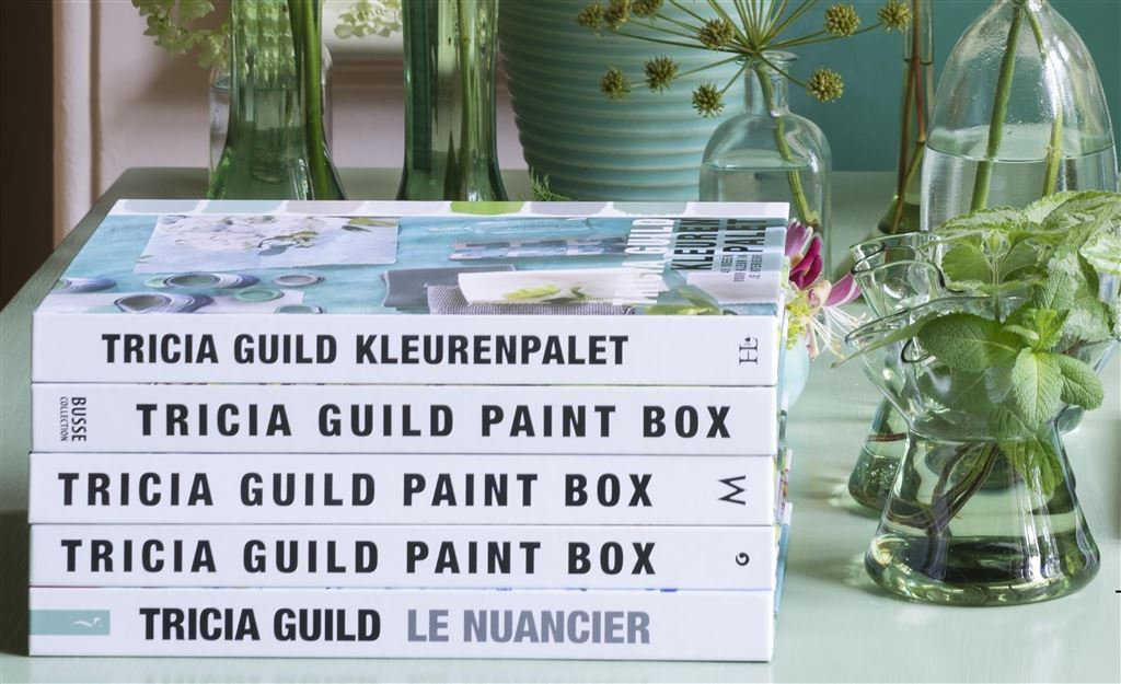 NEW BOOK 'PAINT BOX' BY TRICIA GUILD