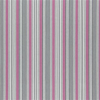 pinstripe - cassis