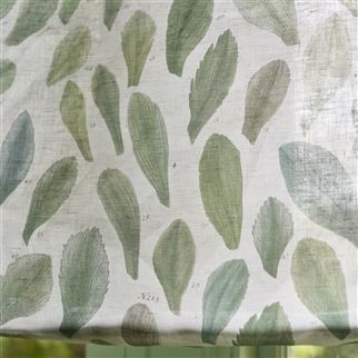 Leaf Specimens Thyme Fabric | John Derian