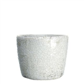 Small White Planter Pot