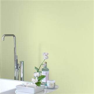 Williams Pear No. 111 Paint | Designers Guild