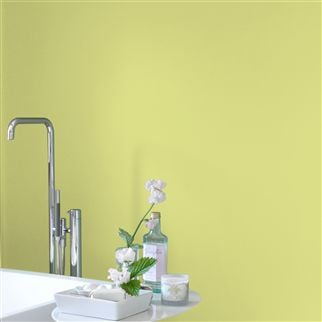 Alchemilla No. 112 Paint | Designers Guild