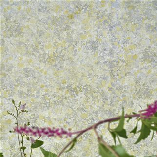 Lustro Birch Wallpaper | Designers Guild
