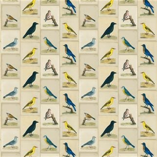 Bird Collage Parchment