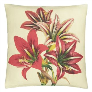 Amaryllis Carmine Decorative Pillow