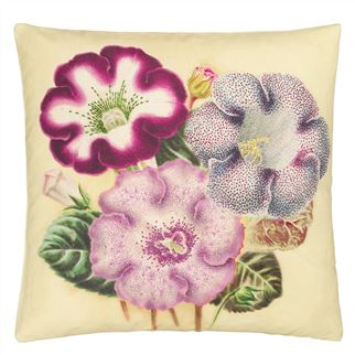 Varietes De Gloxinia Violet Decorative Pillow