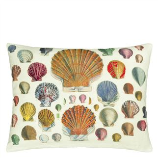 Captain Thomas Brown's Shells Parchment Decorative Pillow