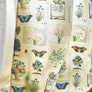 Flora And Fauna Parchment Fabric | John Derian