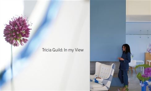 Tricia Guild: 'In my View' book