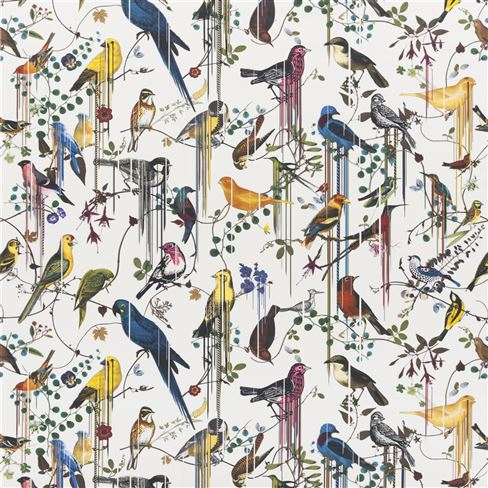 Birds Sinfonia Perce Neige