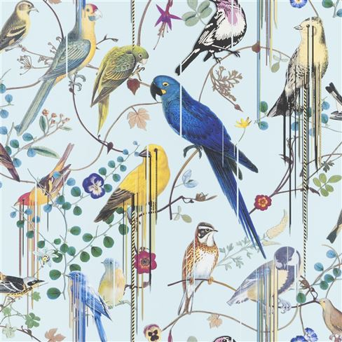 Birds Sinfonia Source