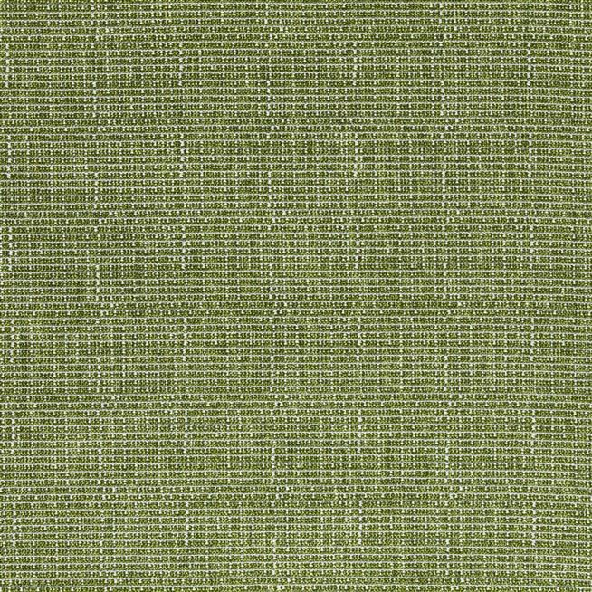 pompano outdoor - grass