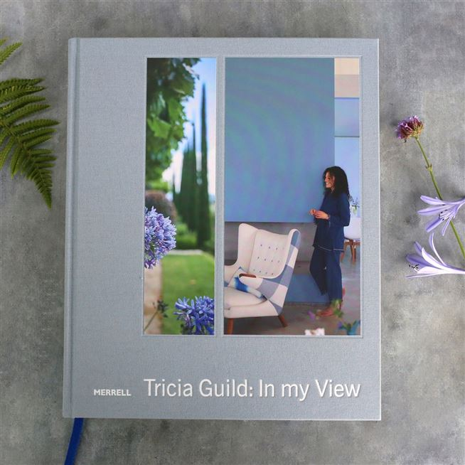 """In My View"" By Tricia Guild 
