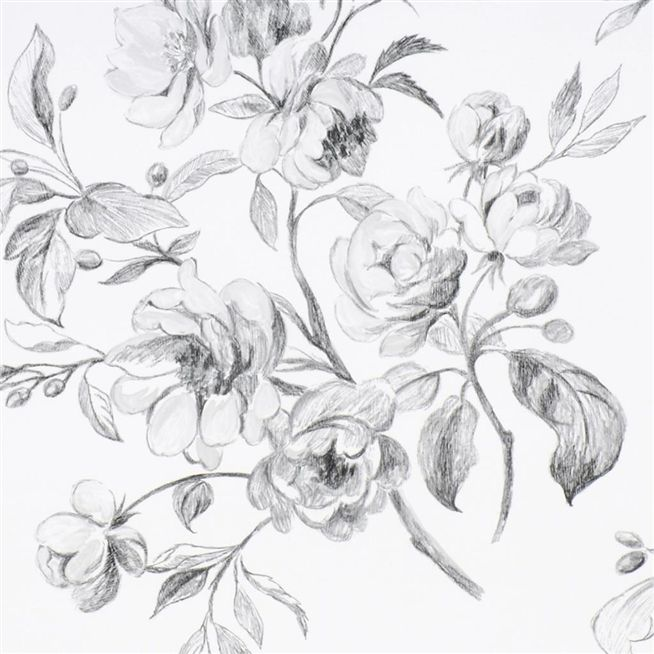 Watelet Black And White Wallpaper Designers Guild