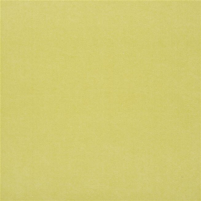 canvas - willow fabric