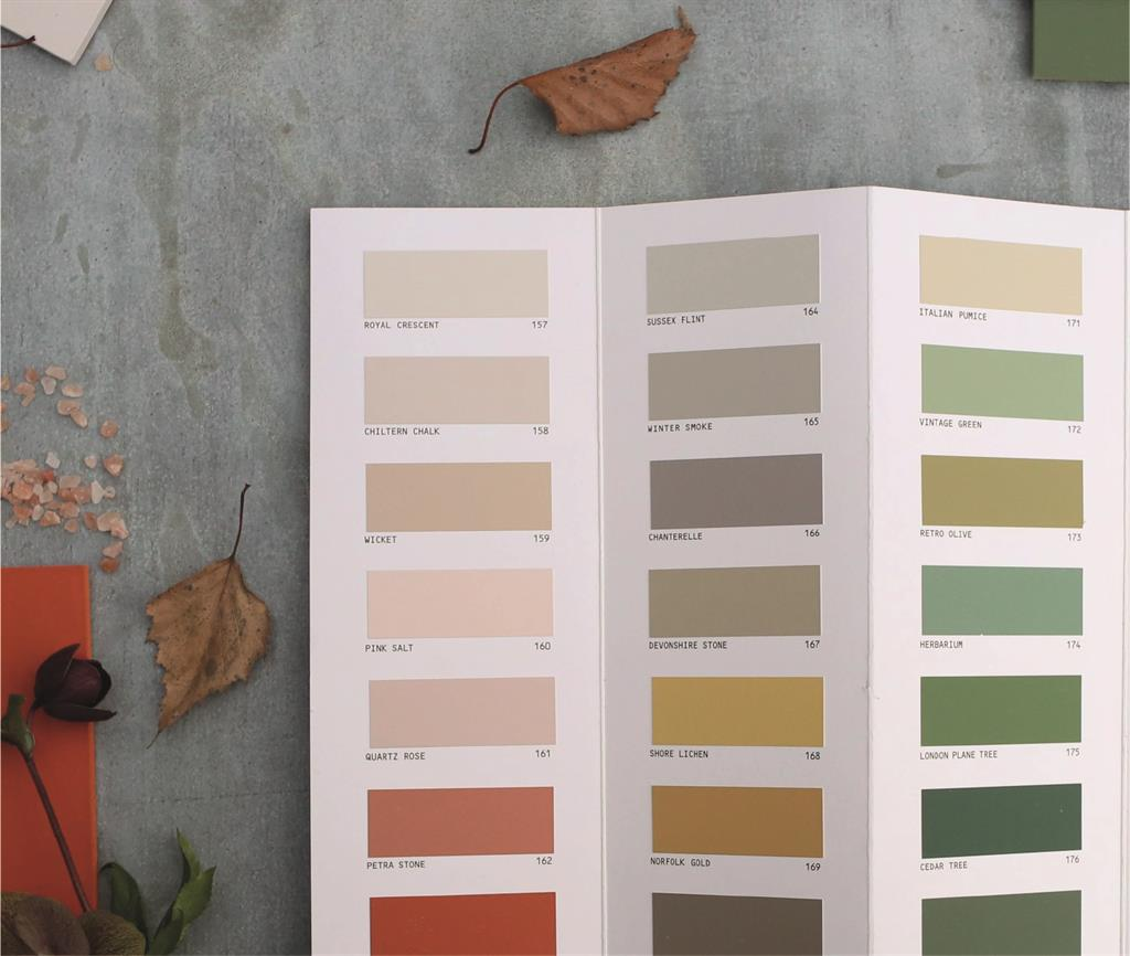 PAINT - NEW EARTH TONES COLLECTION
